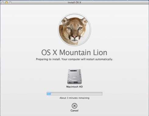 OSX MLion