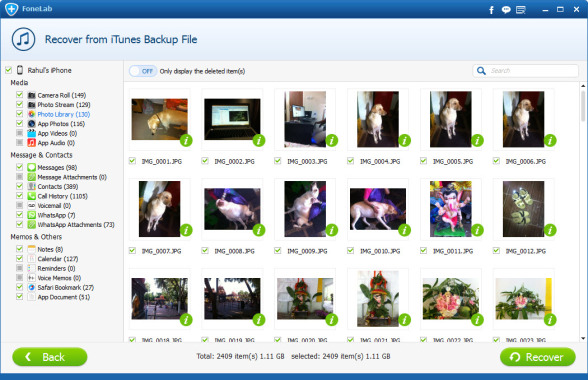 Preview iOS deleted files