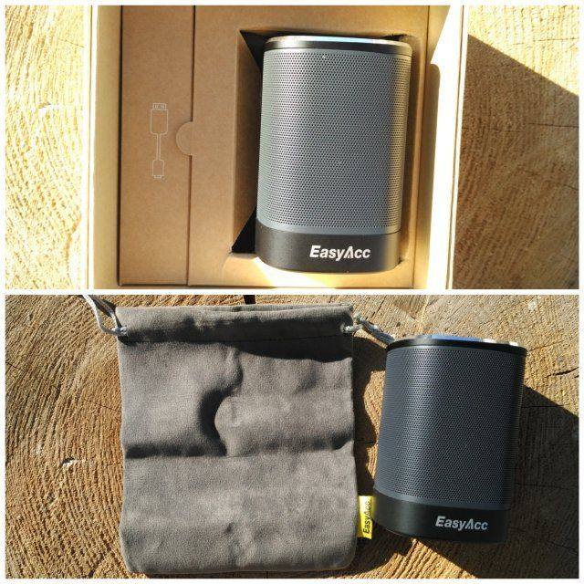 EasyAcc DP100 Portable Speaker price