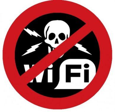 wifi-securite-hacking-piratage-499x487
