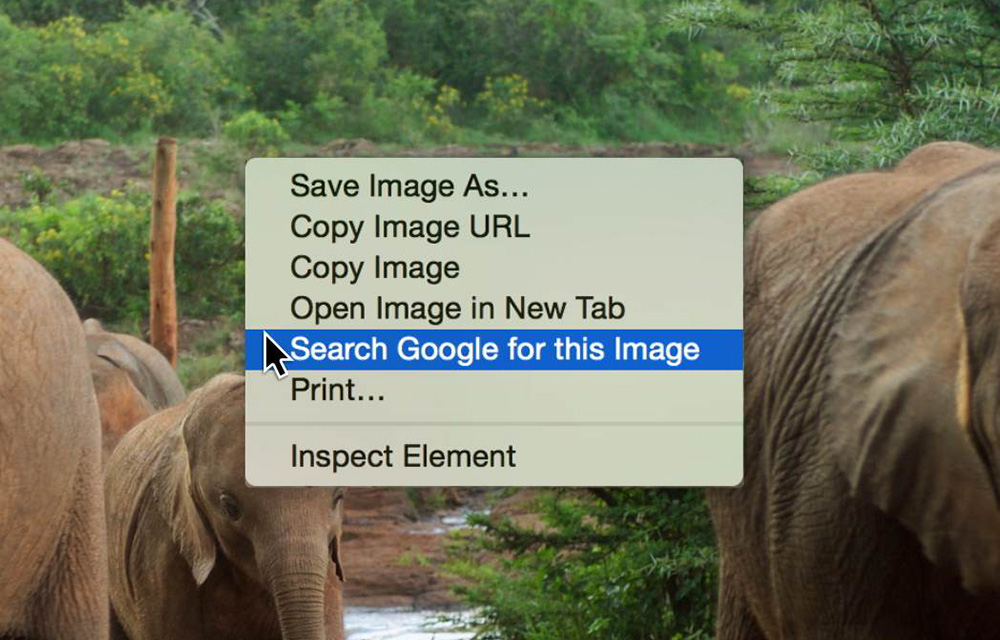 how-to-search-by-image-in-google