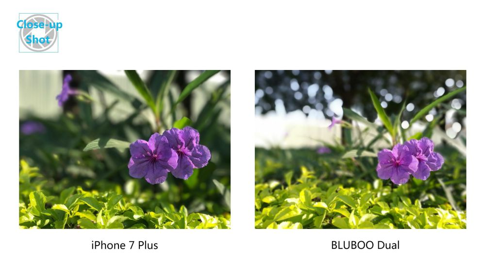 first-bluboo-dual-photo-samples-get-released-4