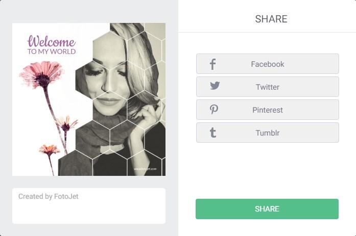 Fotojet Graphic Design Software Share on Social Medias