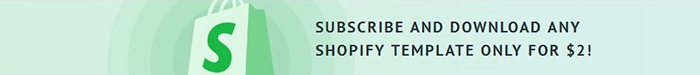 How you could earn more with Shopify Subscription 12