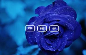 10 Best Image Formats
