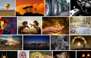 11 Best Websites to Download Free Images