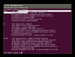 How to Check IP Address in Linux