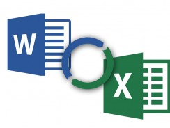 How to Recover Deleted Word or Excel Document