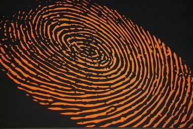 Log Into Ubuntu with your Fingerprint
